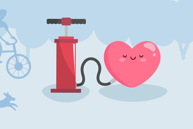 Jantung: Organ Vital Pemompa Darah
